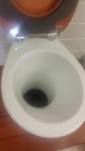 Inside Pasadero compost toilet pedestal
