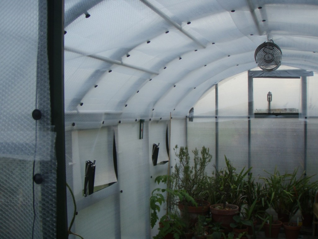 Greenhouse made from bubble wrap