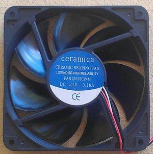 picture of dowmus fan