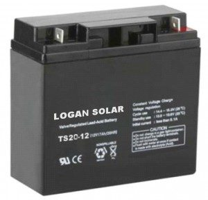 TS20 12 volt battery